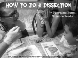 Home-Dissection