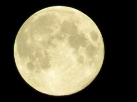 magical-moon
