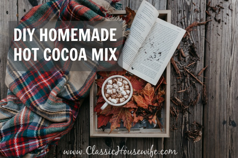 DIY Homemade Hot Chocolate : A Hot Chocolate Kind of Day