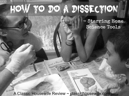 Dissections, Scalpels and Organs, Oh my! (A Home Science Tools Review.)