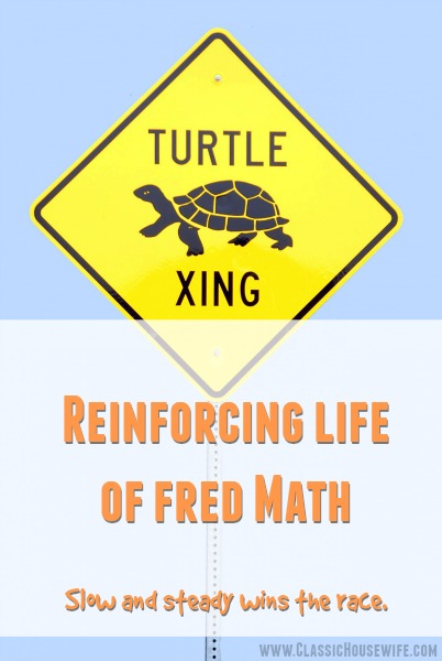 Reinforcing Life of Fred Math – Middle School