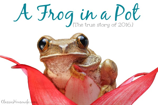 A Frog in a Pot: The True Story of 2016
