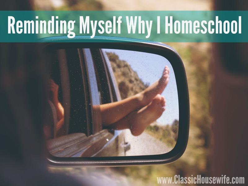 Reminding Myself Why I Homeschool