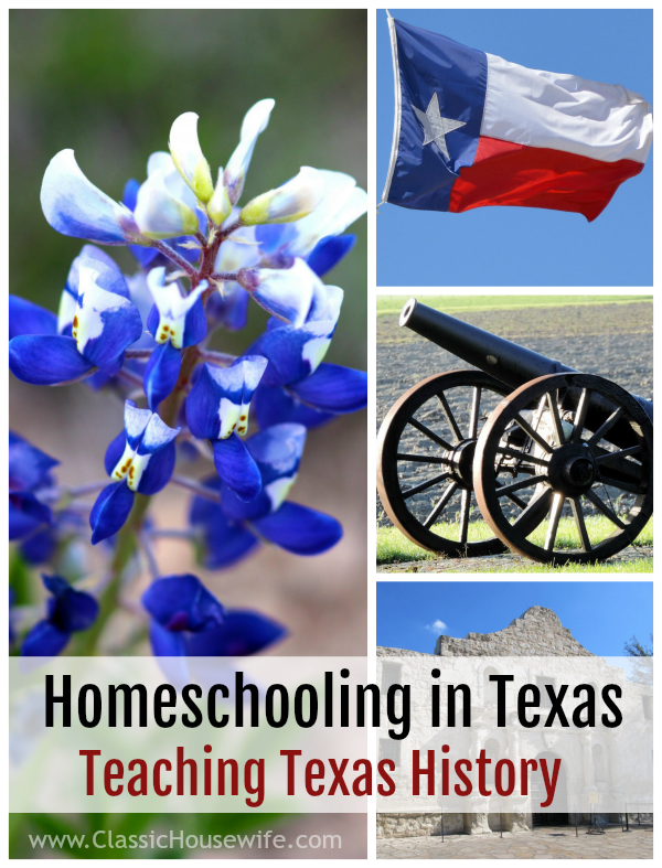 Homeschooling in Texas: Teaching Texas History