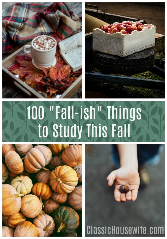 100 Fall-Ish Things For a Fall Study